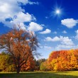 Autumn Landscape — Foto Stock