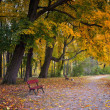 Autumn in the park — Foto de Stock
