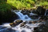 Horská řeka — Stock fotografie