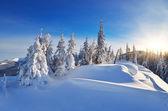 Giornata soleggiata invernale — Foto Stock