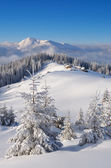 Mountain valley in winter — Stock Photo