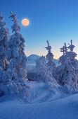 Volle maan in de winter — Stockfoto
