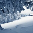 Snow in the mountain valley — Stockfoto