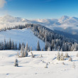 Sunny morning in the mountains — Stock Photo