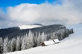 Kışın dağ vadisi. — Stok fotoğraf