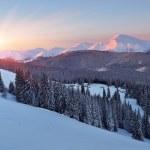 Зимний пейзаж на рассвете — Стоковое фото