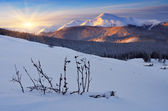 Dawn in winter in mountains — Stock Photo