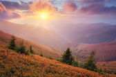 Sunlight in the mountains — Stock Photo