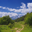 Summer in the mountains of the Caucasus — Stock Photo