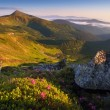 Beautiful morning in the mountains — Stock Photo