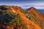 山の日当たりの良い朝 — ストック写真