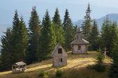 森の中で古い教会 — ストック写真