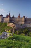 Old fortress on the hill  — Stock Photo