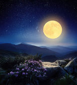 Full moon in the mountains  — 图库照片