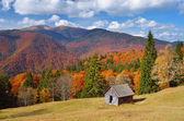 Hut in a mountain forest. Autumn Landscape  — Stok fotoğraf