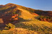 Hyddor i ett berg. höstlandskap — Stockfoto