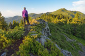 Reisende in den bergen — Stockfoto