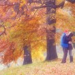 Couple in autumn park — Stock Photo #50634259
