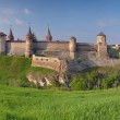 Panorama of the old fortress — Stock Photo #50634579