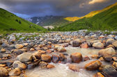 Rapid mountain river  — Stock Photo