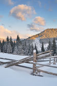Winter landscape with a fence  — Stock Photo