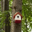 The autumn bird nesting-box in the tree — Stock Photo
