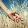 Hand in autumn grass. — Stock Photo