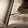 Pen on old book. Photo in old vintage style — Stock Photo #21621831
