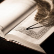 Pen on old book. Photo in old vintage style — Stock Photo #21621841