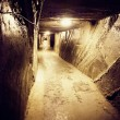 Wieliczka salt mine. Poland — Stock Photo #22013845