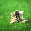 Vintage sneakers resting on the grass — Stock Photo