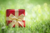Present on grassy background — Stock Photo