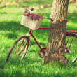 Vintage bicycle waiting near tree — Stock Photo #26169335