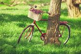Vintage bicycle waiting near tree — Stock Photo