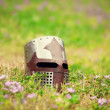 Medieval helmet on grass — Stock Photo #26311889