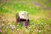 Medieval helmet on grass — Stock fotografie