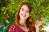 Redhead girl near cherry — Stock Photo