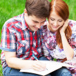Young students sitting on green grass with note book. — Stock Photo #28860139