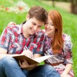 Young students sitting on green grass with note book. — Stock Photo #28860845