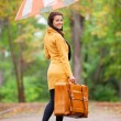 Brunette girl holding suitcase and umbrella at autumn alley in t — Stock Photo #31436179