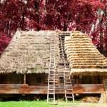 Traditional Ukrainian old house in skansen — Stock Photo #32716283