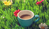 Cup of coffee on green grass. — Stock Photo