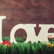 Word love on green grass and wooden background — Stock Photo #47407925