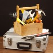 Tool box — Stock Photo #30816475