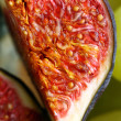 A fig — Stock Photo