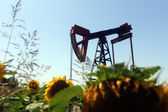 Oil pump jack  — Foto de Stock