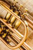 Trumpet — Stockfoto