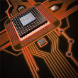 Technology background. Central Processing Unit. — Stock Photo #20319441