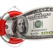 Concept hundred dollars in a life buoy — Stockfoto #20324689