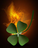 Green clover in Fire — Stock Photo